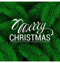 Merry Christmas Lettering Green branches of spruce vector image