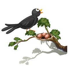 A black bird at the branch of a tree with a nest vector