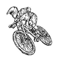cycling mountain bike vector image vector image