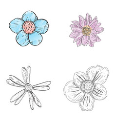 Set of flowers vector