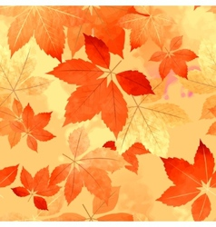 Seamless autumn leaf fall pattern vector