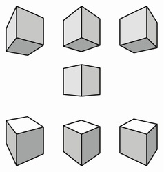 Cubes with shadows in perspective vector