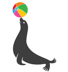 seal animal vector image