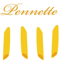 Pennette pasta vector image
