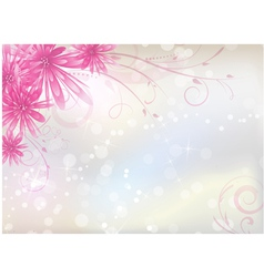 Pink aster background vector image vector image