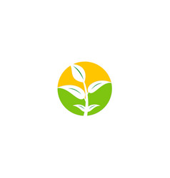 Plant leaf seed ecology organic logo vector