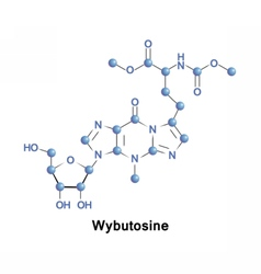 Wybutosine stabilizes protein synthesis vector