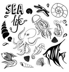 sea life hand drawn sketch with seahorse fish vector image