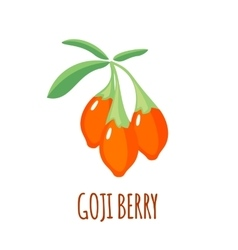 Goji berry icon in flat style on white background vector