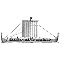 Viking ship drakkar vector