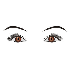 Object pair of eyes brown isolated vector