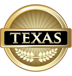 Texas gold icon vector