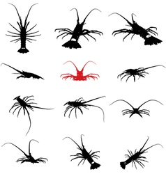 lobster silhouette set vector image