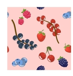 Berries set vector image vector image
