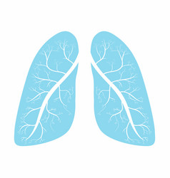 lungs human lungs anatomy symbol vector image vector image