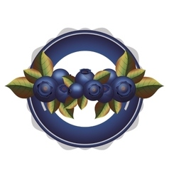 Plate with many blueberry and leafs vector