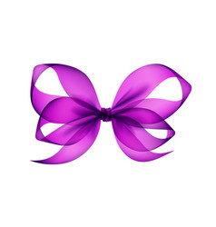 purple violet transparent bow top view isolated vector image vector image