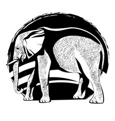 silhouette of an elephant with the skin texture vector image