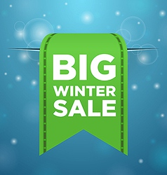 Winter sale big green ticket vector image