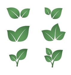 Green leaves icons set vector