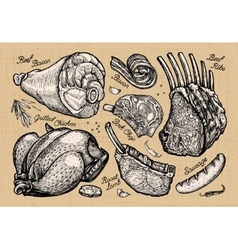 meat butcher shop hand drawn sketches of food vector image