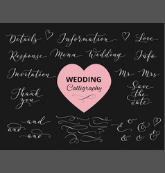 wedding hand written calligraphy set isolated on vector image vector image