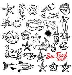 Beautiful vintage hand drawn linear marine life vector