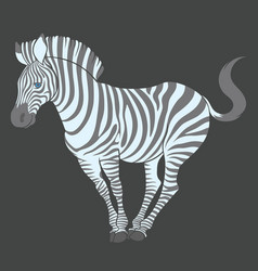 Fun cute cartoon zebra vector