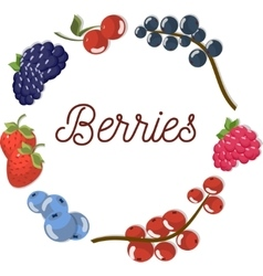 Set two of beautiful flat berries vector