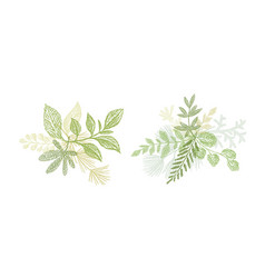 green floral branch hand drawn composition vector image vector image