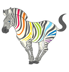 Cute naturalistic zebra with rainbow stripes vector
