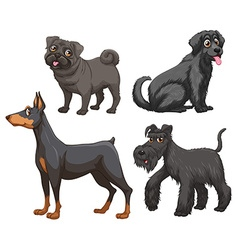 Different kind of dogs vector