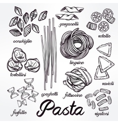 Hand drawn pasta variations set vector
