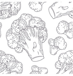 hand drawn seamless pattern with broccoli vector image