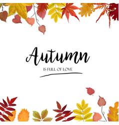 Floral autumn season card design with leaf border vector