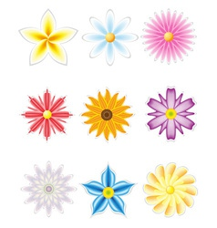 icon set of flowers vector image vector image