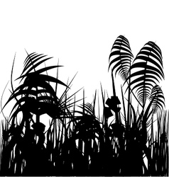 jungle silhouette vector image