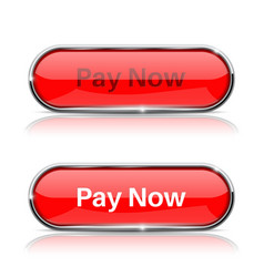 pay now button shiny red oval web icons normal vector image vector image