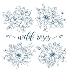 Wild roses bouquets collection vector
