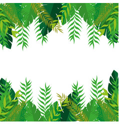 Frame with green leaves nature design vector