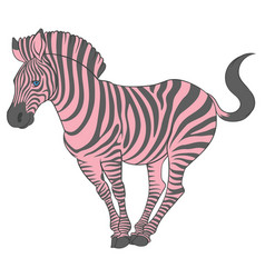Cute naturalistic zebra with pink stripes vector