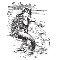 Little mermaid vintage vector