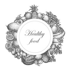 sketch hand drawn fruit nutrition vector image vector image