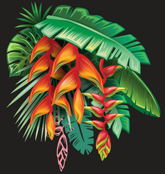 tropical plants and heliconia flowers vector image