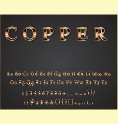 Shiny copper letters vector