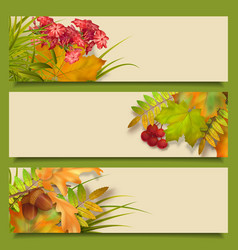 Autumn fall leaves banners vector