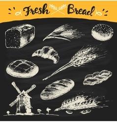 Set fresh draw drawn bread wheat sketch vector