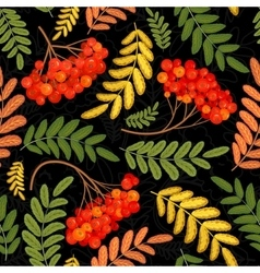 Rowan seamless pattern juicy ripe rowanberries vector