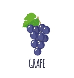 Grape icon in flat style on white background vector