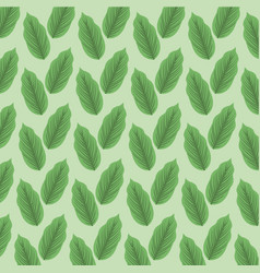 color background pattern green lanceolated leaves vector image